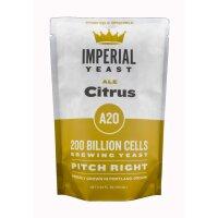 Imperial Yeast A20 Citrus Ale - liquid Yeast