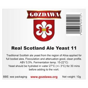 GOZDAWA Real Scotland Ale yeast 11 (RSAY11) - top...